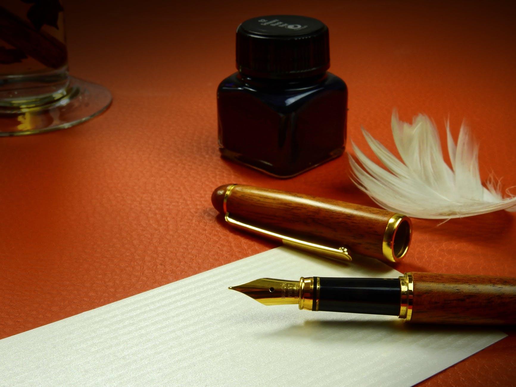 blur close up composition feather